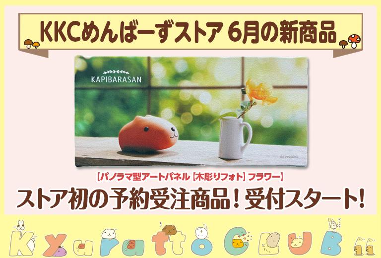 6月新商品受注スタート_thum公式用_0610